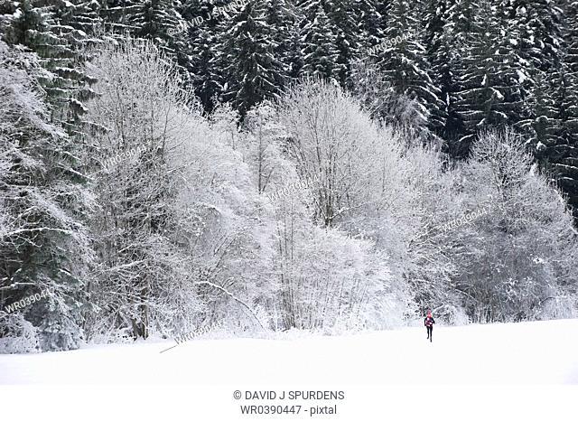 Jogging through a beautiful snowy winter landscape