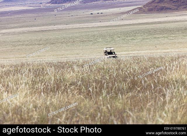 Pirschfahrt im Namib Rand Nature Reserve