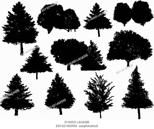 Tree silhouettes collection set