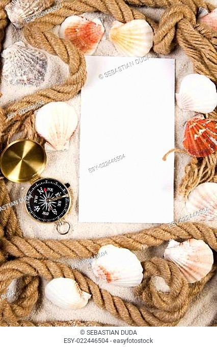 Paper background and sea shell