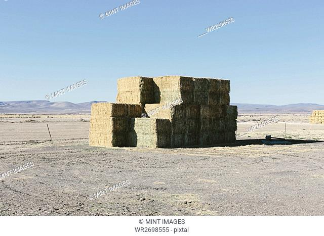 Stacked hay bales in rural Nevada, USA