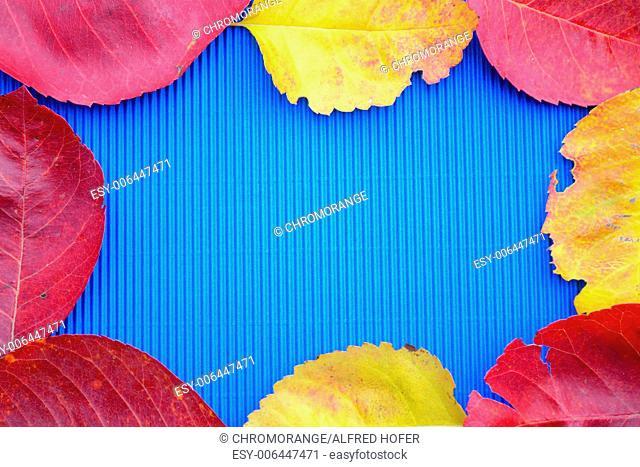 colorful foliage framed blue background