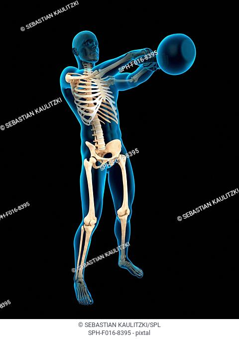 Skeletal structure of person swinging kettle bell, illustration