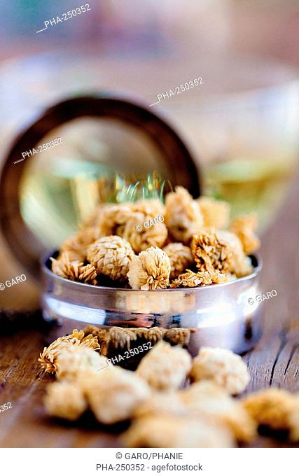 Herbal tea of dry blossoms of camomile Anthemis nobilis