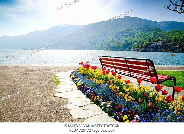 Bench with flowers on the lake front and mountains