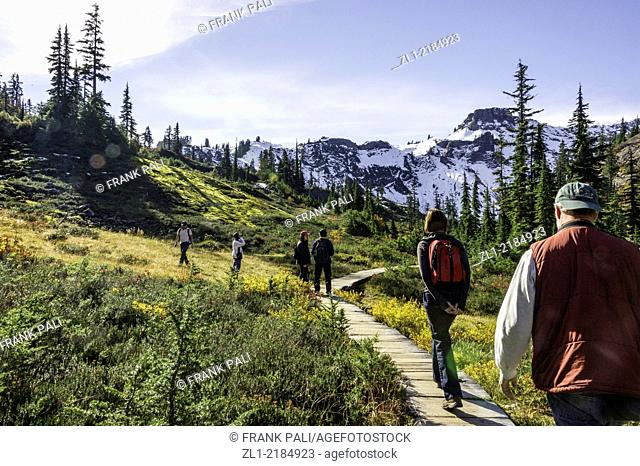 Hikers on the trail in Mount Bker National Park USA
