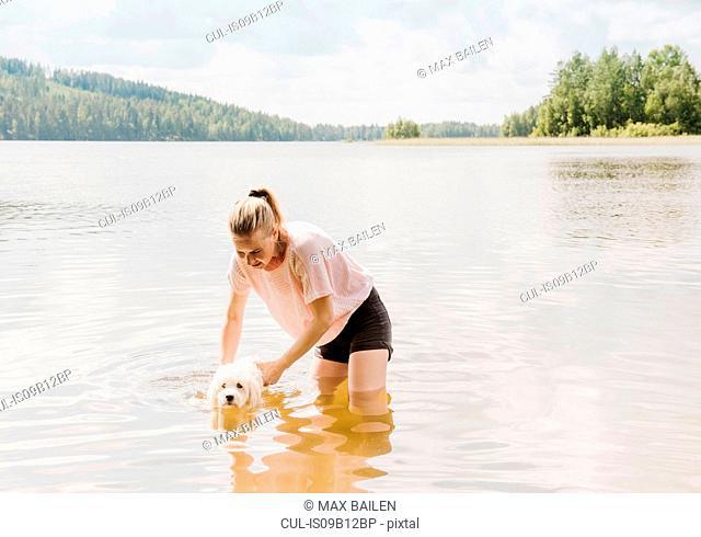 Woman training coton de tulear dog to swim in lake, Orivesi, Finland
