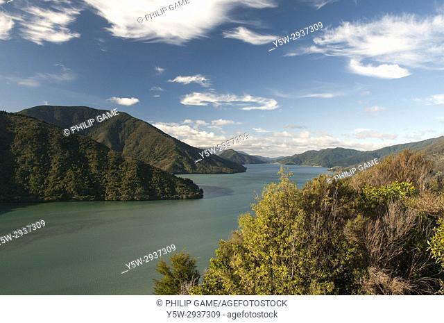 Mahau Sound in the Marlborough Sounds, New Zealand