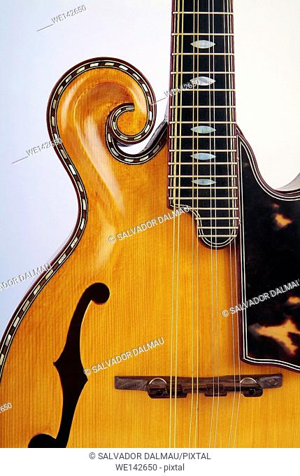 photography studio,detail of a musical instrument,electric guitar, location girona,catalonia,spain,europe,