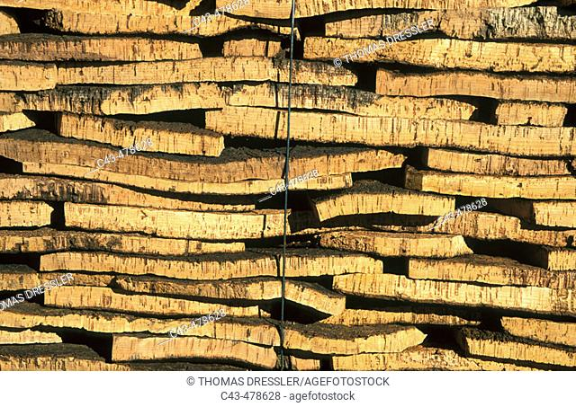 In a cork factory at Cortes de la Frontera: piled up barks of cork oaks (Quercus suber) soon will be manufactured into the final product, the bottle cork