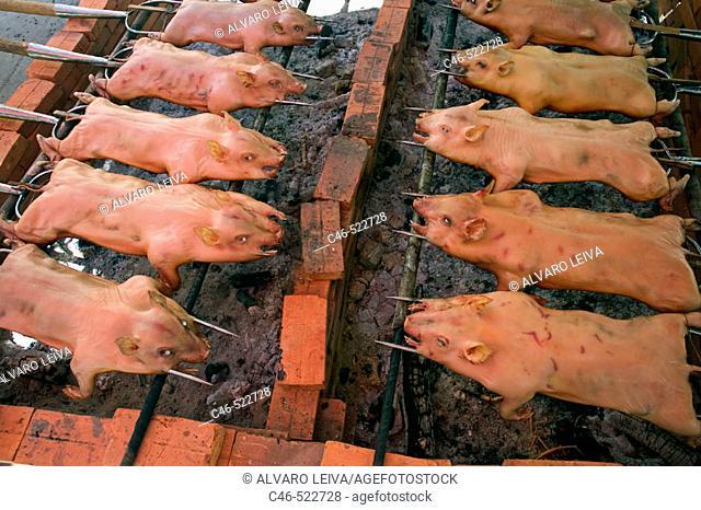 Porks, Ben Tree, Mekong Delta. Vietnam