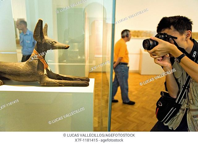 Museum Island Neues Museum  Figure of reclining jackal 600 aDC Egyptian art  Berlin  Germany