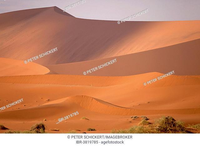 Sossusvlei dunes in the morning light, Namib-Naukluft National Park, Namib Desert, Namibia