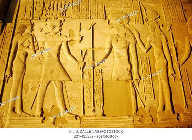 Reliefs at the Temple of Kom Ombo. Egypt