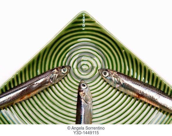 Three raw anchiovies in a green dish