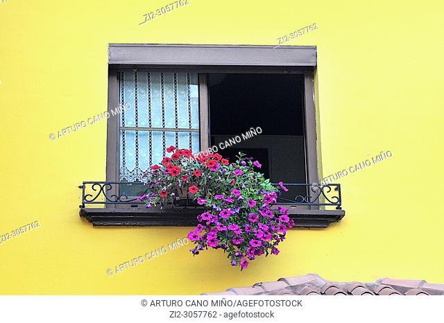 A window with flowers. Espinaredo town, Concejo de Piloña, Asturias, Spain