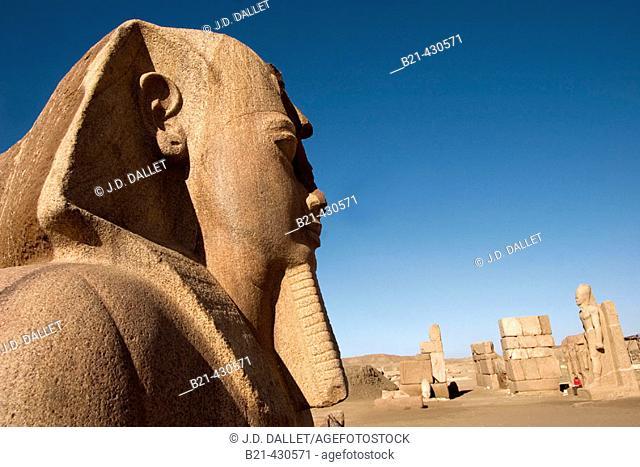 Doorway of Shoshenq II and statue of Ramses II at fore, ruins of Tanis. Egypt