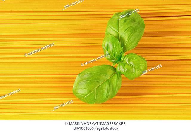 Spaghetti with basil leaves