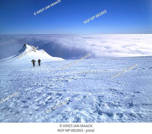 Two people walking on a polar landscape