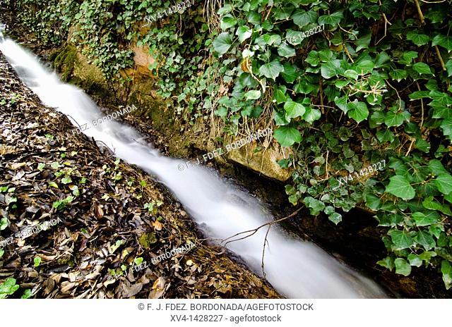 Piedra river canyon, Monasterio de Piedra Natural Park, Nuevalos, Zaragoza province, Aragon, Spain