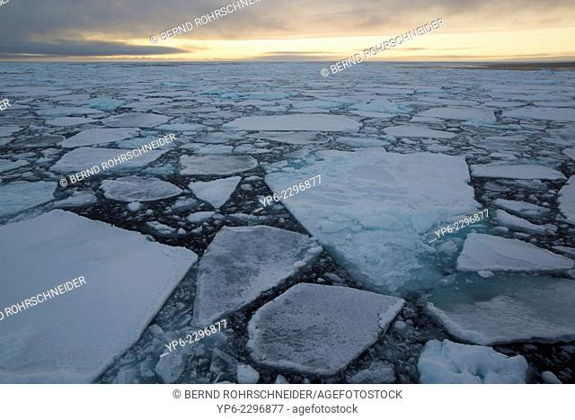 Arctic Ocean with ice floes in evening light, Erik Eriksenstretet, Svalbard
