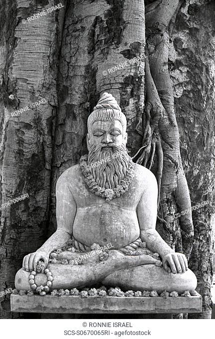 Banyan Tree Sadhu statue India