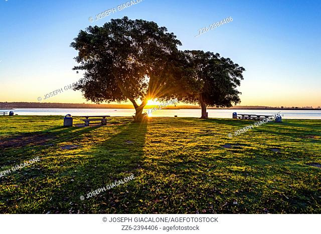 Sunrise with view of trees located at Crown Point Shores Park. San Diego, California, United States
