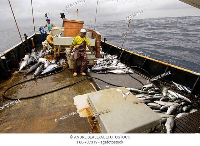 Offshore commercial longline tuna fishing, Brazil, Atlantic Ocean