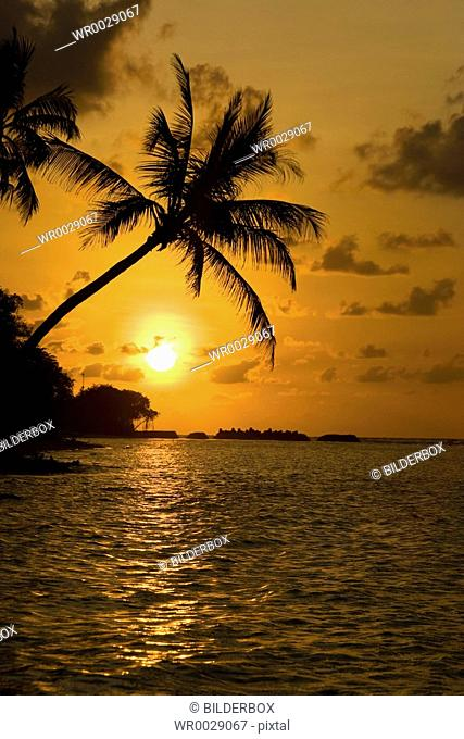 Sunset at the dream beach