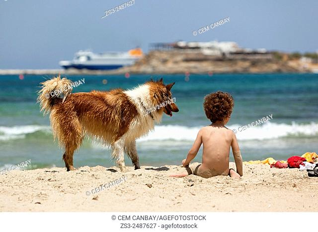 Child with a dog at the beach, Naxos, Cyclades Islands, Greek Islands, Greece, Europe