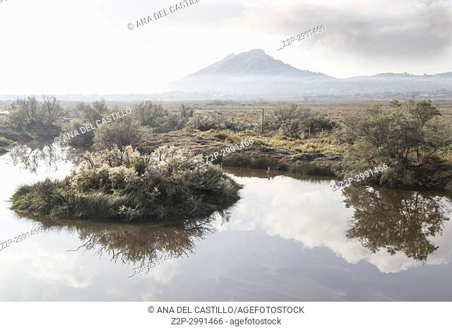 Albufereta in Pollensa Wetland in Majorca island by sunrise Balearic islands Spain