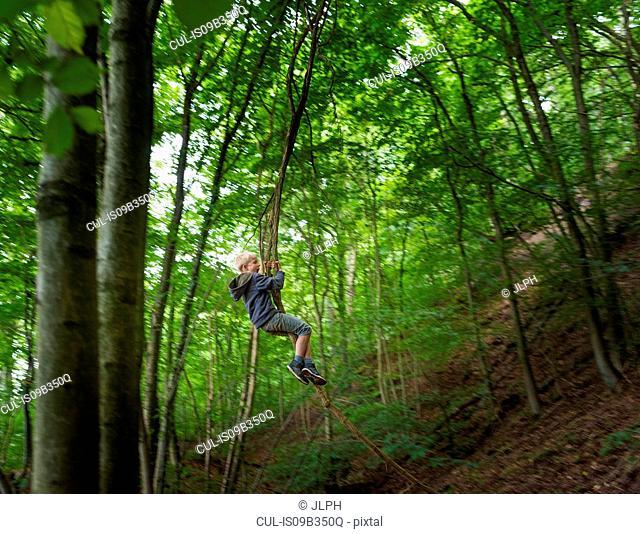 Boy in forest swinging on tree