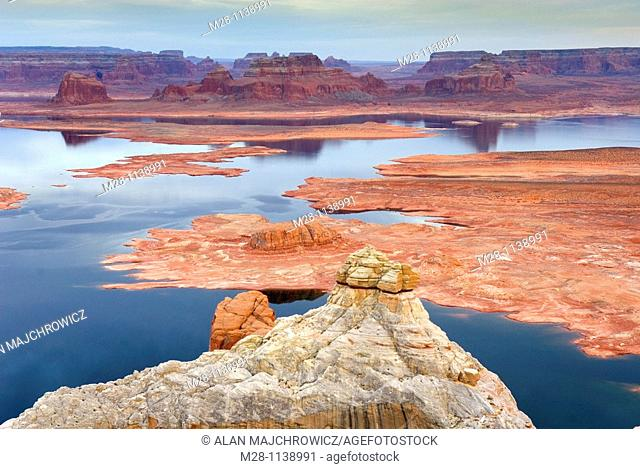 View of Padre Bay and Lake Powell from Alstrom Point, Glen Canyon National Recreation Area Utah