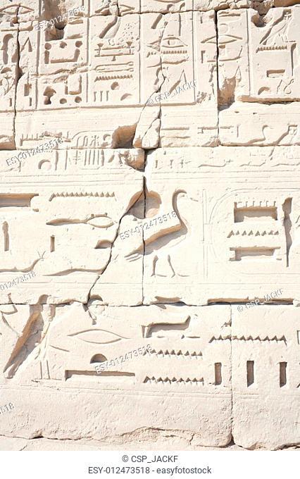 Hieroglyphic relief in the Temple of Karnak