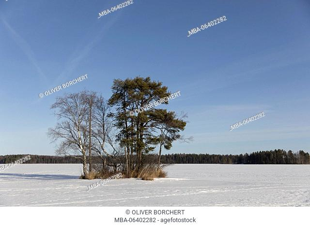 Finland, Saimaa area, small island on lake with snow in winter