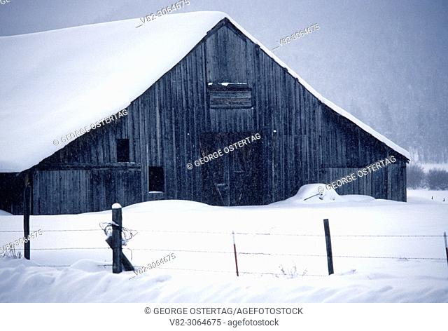 Barn in snowstorm, Whitney, Oregon