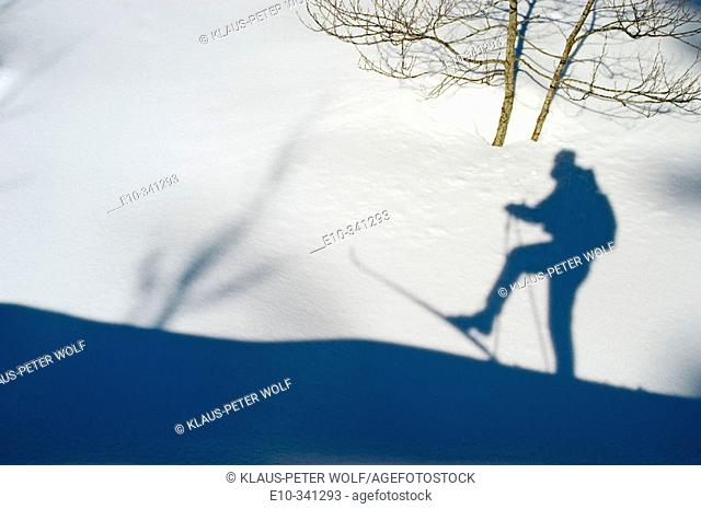 Shadow of cross-country skier in the snow int the cross-country ski run