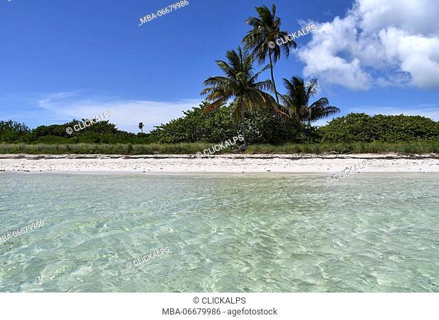 Palms on Bahia Honda - Keys Island - Florida, USA