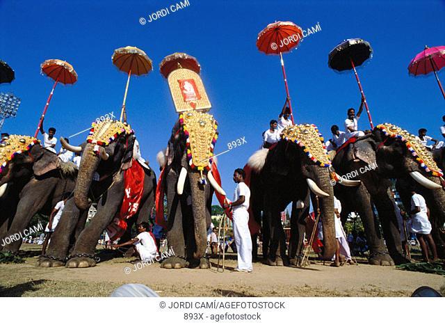 Elephant Festival. Kerala. India