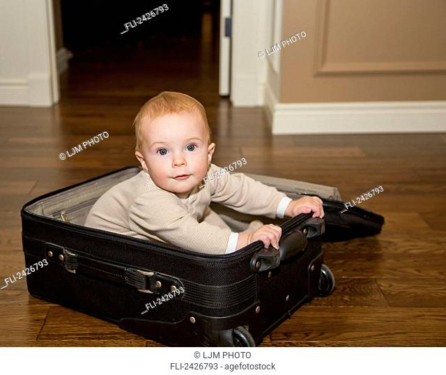 Infant playing in suitcase on hardwood floor; St. Albert, Alberta, Canada