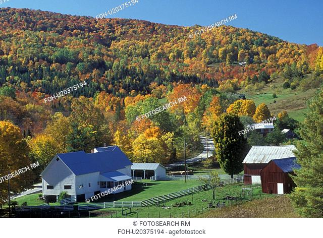 farm, fall, West Topsham, VT, Vermont, Scenic view of the Herman Farm and colorful fall foliage in village of West Topsham in the autumn