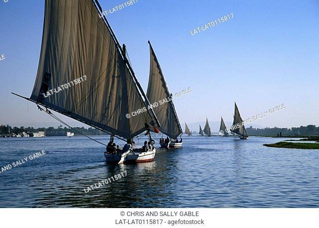 The felucca is a tall masted narrow fast lateen-rigged local wooden boat with a single large triangular sail. Many boats are now converted to take passengers...