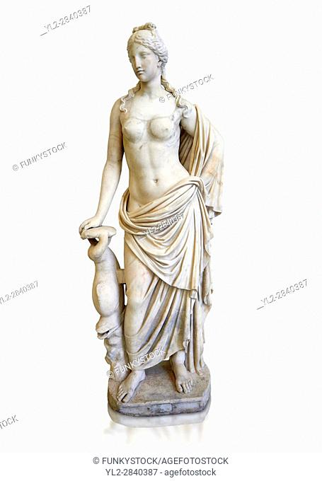 2nd - 1st century BC Roman marble sculpture of Aphrodite (Venus), â. . Marine Venus' Type with a dolphin, copied from a Hellanistic Greek original, inv 6296