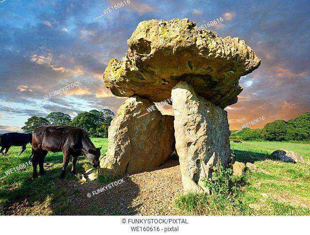 The megalithic St Lythans burial chamber, in Welsh siambr gladdu Lythian Sant, part of a long Neolithic chambered long barrow built about 6000 years ago