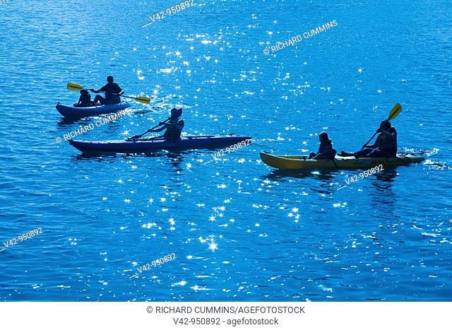 Kayak Rental,Embarcadero,City of Morro Bay,San Luis Obispo County,California,USA