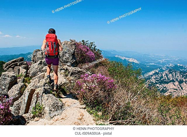 Rear view of female hiker walking ridge on way to Daecheongbong peak, Seoraksan National Park in South Korea