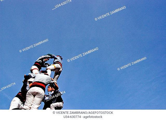 """Castellers"" (catalan tradition), human tower during Santa Eulàlia festivities, 2007. Barcelona. Spain"
