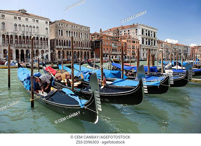 Gondolier preparing his Gondola for the next clients at Rialto district, Venice, Veneto, Italy, Europe