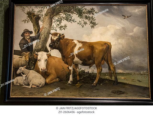 Painting 'The bull' from Paulus Potter
