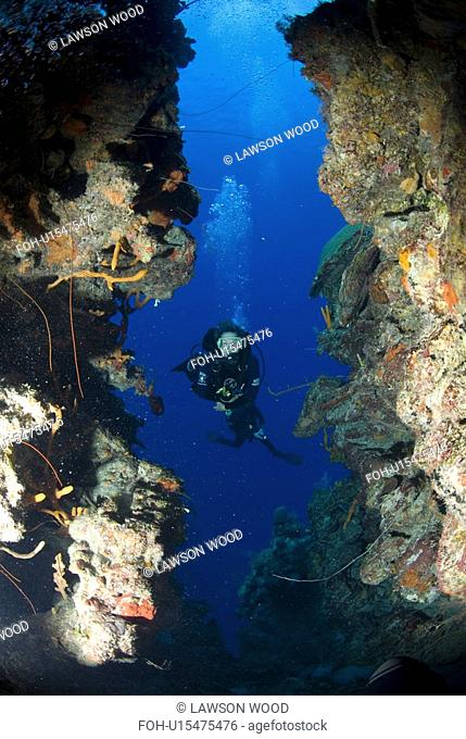 Diver on tropical coral reef and caverns, Maria La Gorda, Cuba, Caribbean